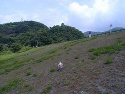 秋元湖展望台(春〜秋)